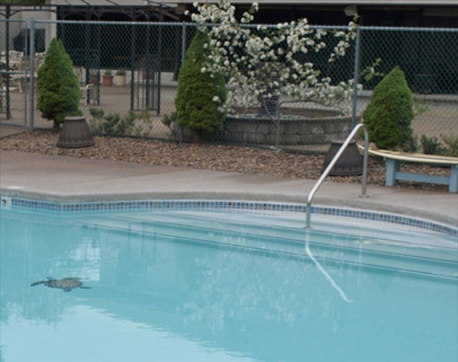 Premier RV Resort swimming pool salem oregon